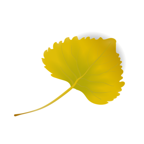 秋季落叶元素
