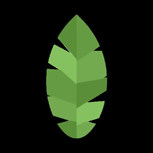 3D树叶图片