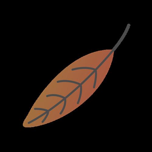 枯叶免抠素材