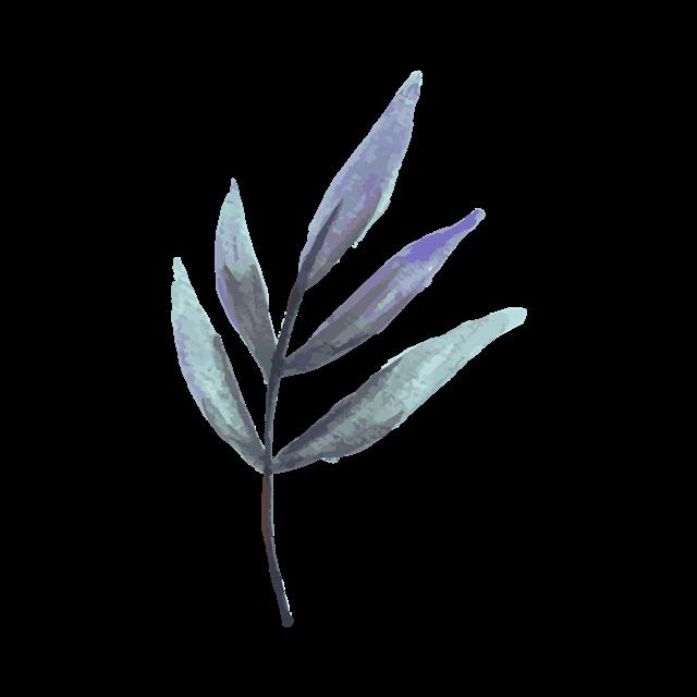 水彩叶子矢量图