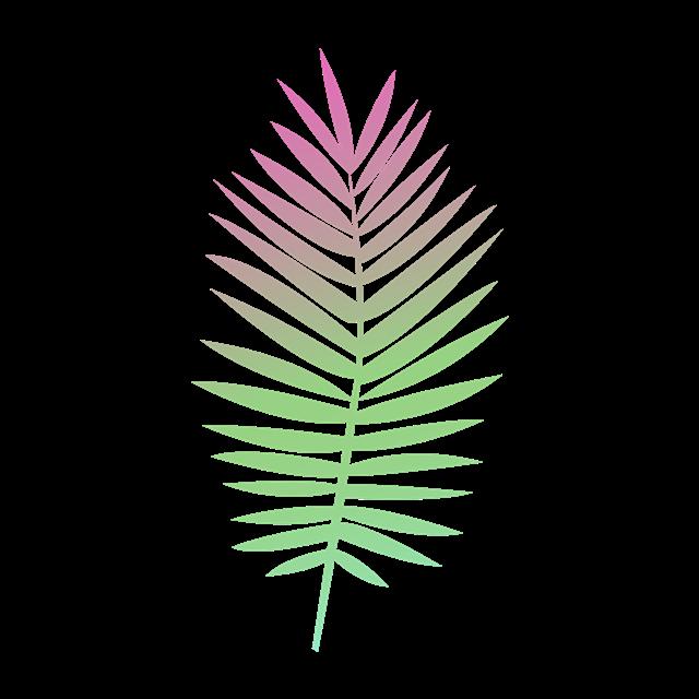彩色叶子矢量图