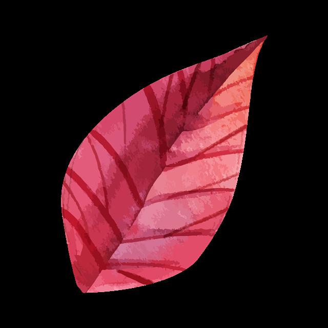 手绘红色叶子图片