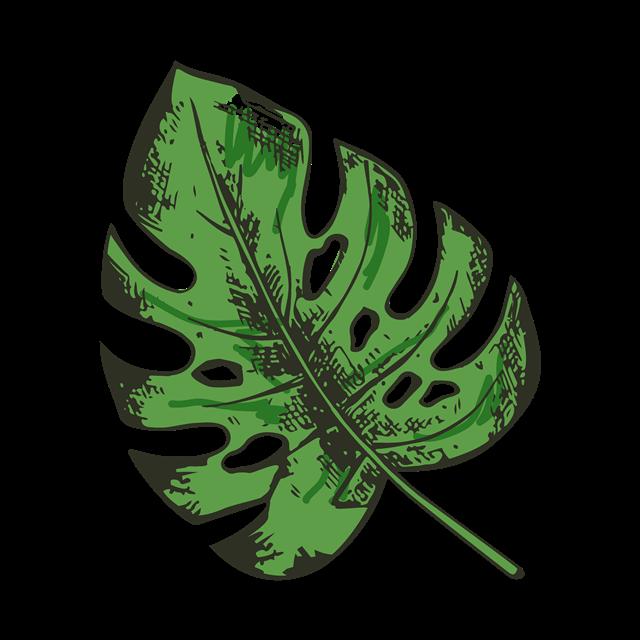 大片叶子免扣元素