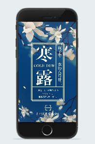 中国古风寒露节气海报