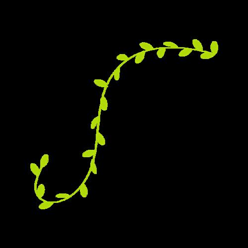 绿色树藤矢量图