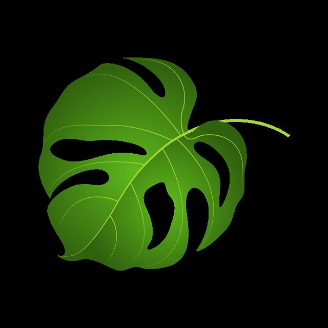 手绘绿色树叶