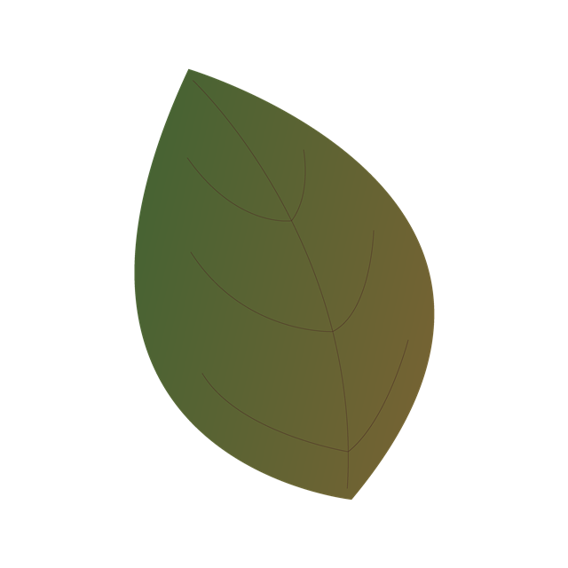 叶子免抠图