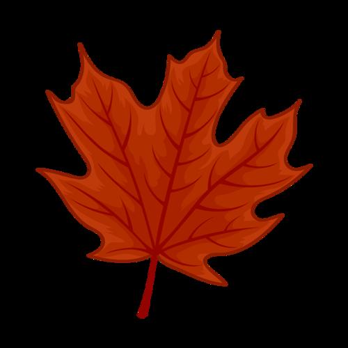 红色枫叶元素图片
