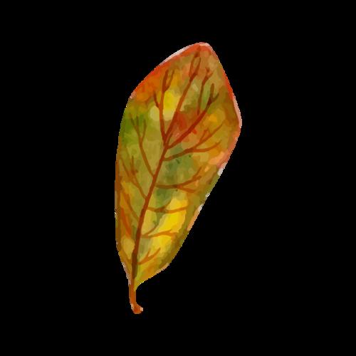 落叶矢量图片