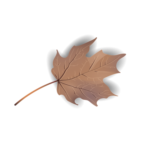 干枯枫叶矢量图