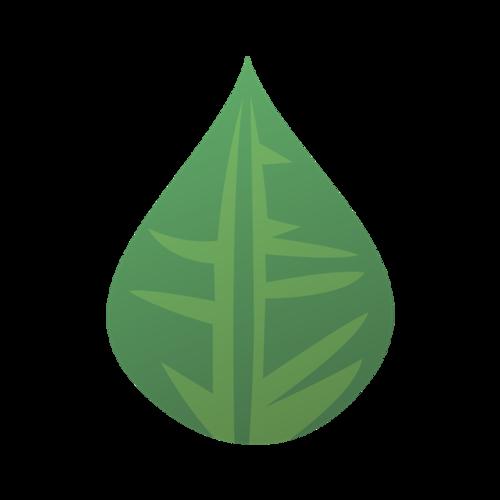水滴状绿叶矢量图