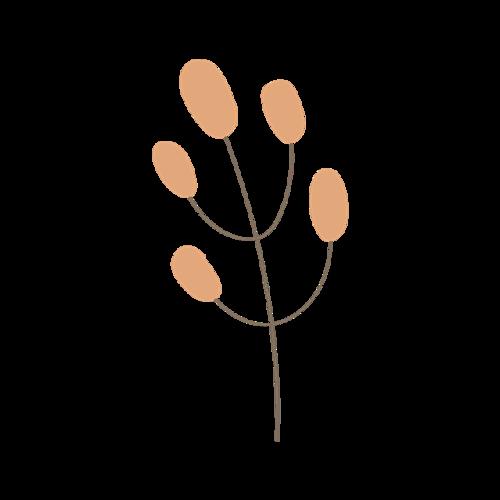 一根树枝图片