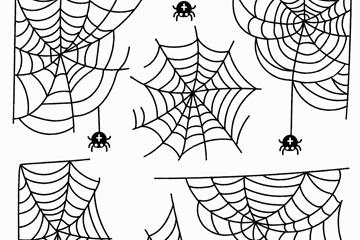 蜘蛛简笔画图片