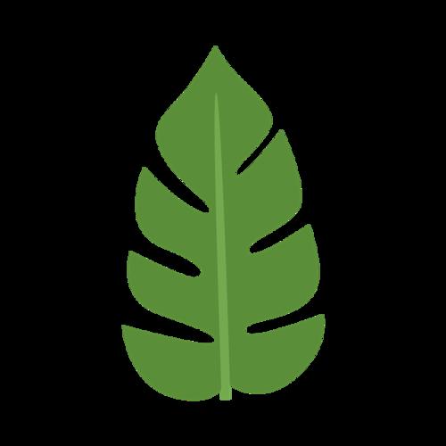 热带树叶卡通素材