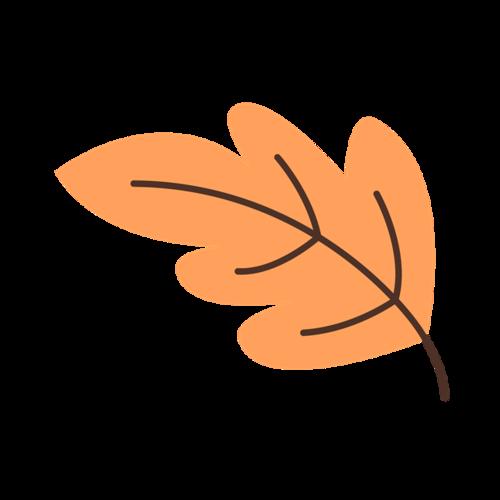 秋叶插画图片