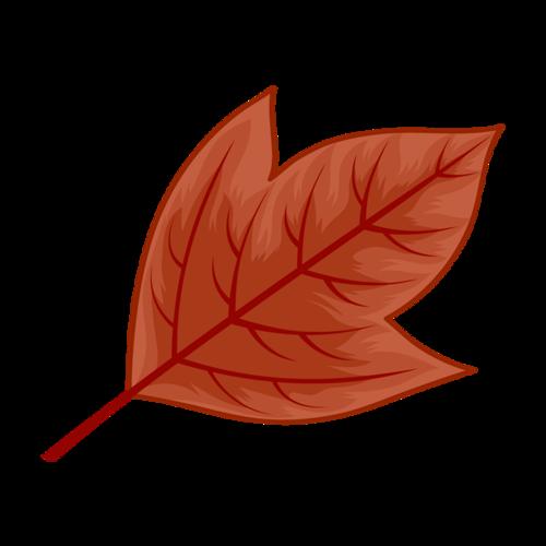 红色枫叶免抠图片