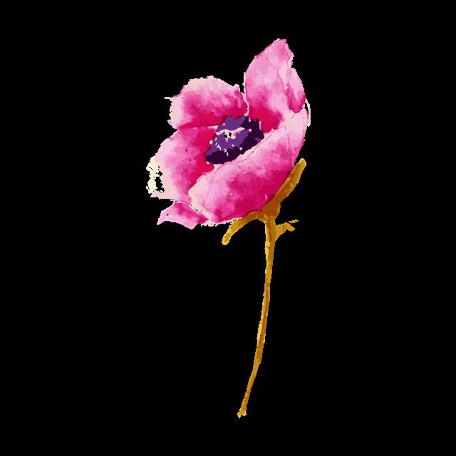 水彩粉色鲜花矢量图