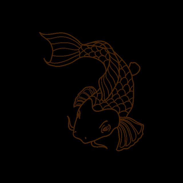 金鱼矢量图