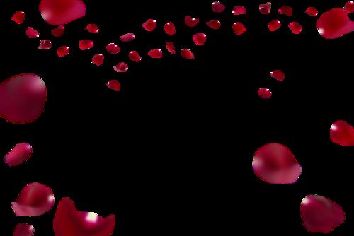 浪漫玫瑰花瓣