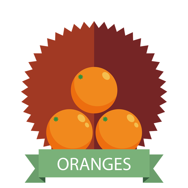 卡通橙子图标