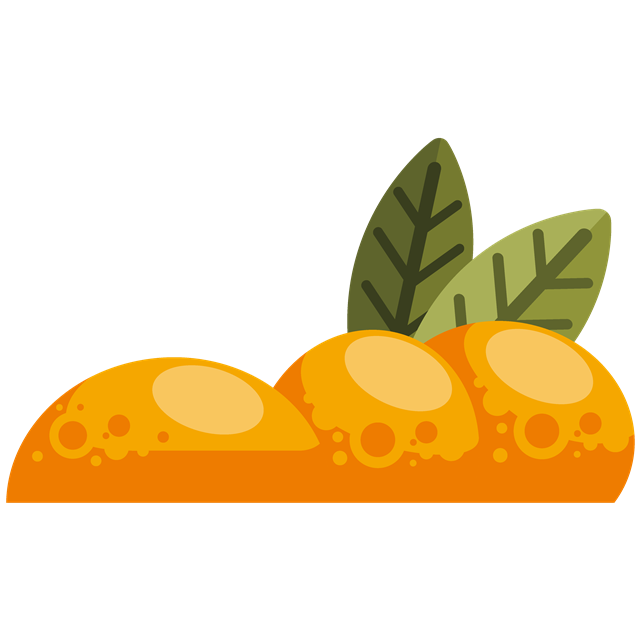 带叶子水果矢量图