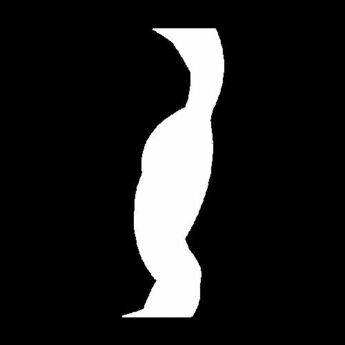 白色线条曲线