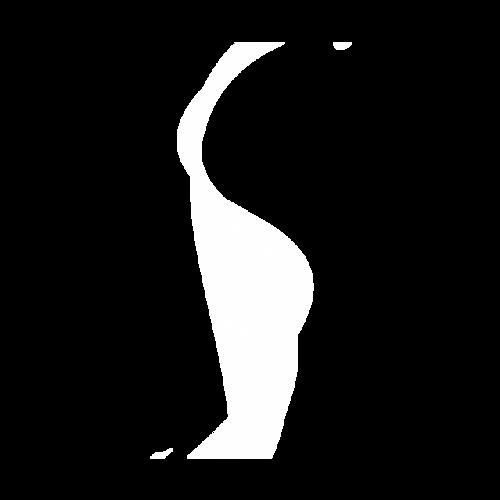 薄纱矢量图